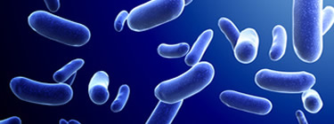 NIHR Journals Library collections | Antimicrobial resistance